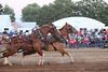Horse Pulls (3)