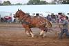 Horse Pulls (17)