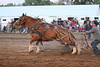 Horse Pulls (15)