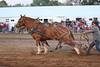 Horse Pulls (16)