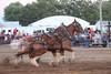 Horse Pulls (4)