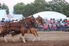 Horse Pulls (2)