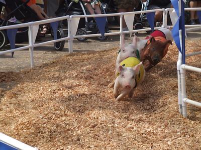 Orange County Super Fair - 8/1/09