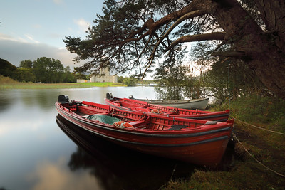 Red Boats-1L8A9495