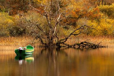 Autumn Colours at Lough Leane-IMG_3504
