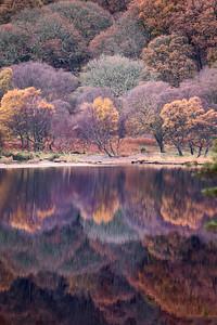 Reflections at Glendalough-IMG_8206