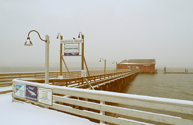 Snow Whale: Coupeville Wharf in winter.