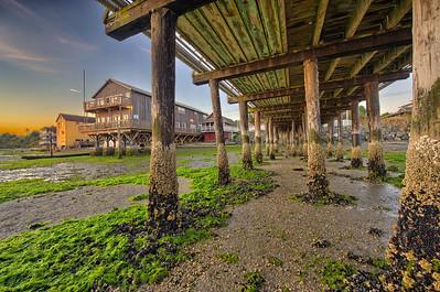 Wharf Pilings