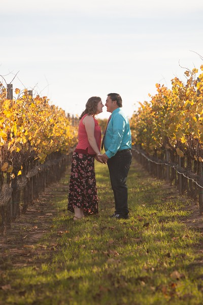 Carissa + Jeremy | Santa Maria Wine Country Engagements 2014