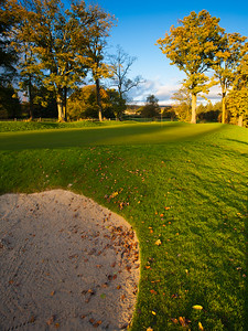 Autumn leaves, Balmore Golf Club