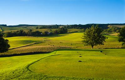 13th tee, Balmore Golf Club