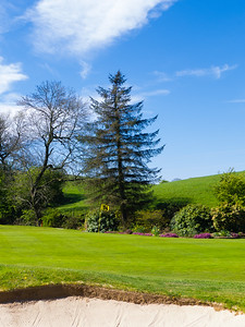 14th green, Balmore Golf Club