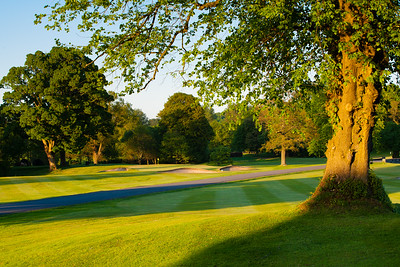 Evening light, 1st hole