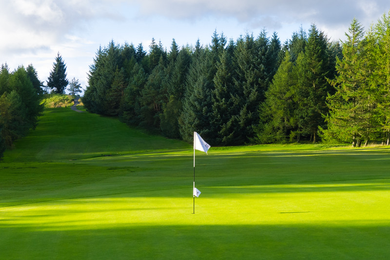 Pin & trees, Hilton Park Golf Club