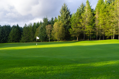 Green and trees, Hilton Park Golf Club
