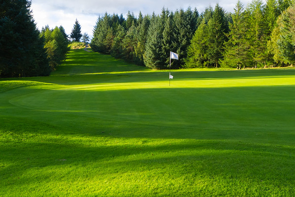 Light and Shade, Hilton Park Golf Club