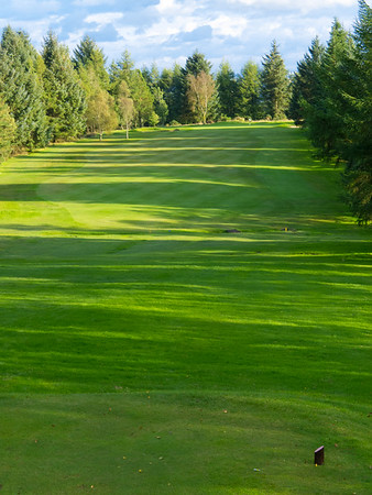 Tee view portrait, Hilton Park Golf Club