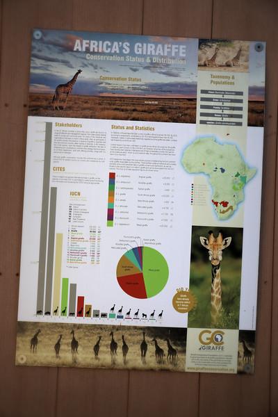 IMG_0302_SD ZOO_Giraffe Conservation Poster.jpg