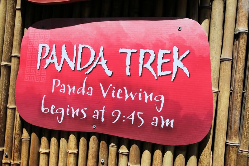 IMG_0341_SD ZOO_CKS_8.10.17_Panda trek.jpg