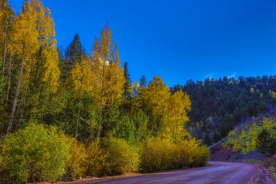 Fall-Colors