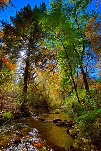 Fall Bear Creek
