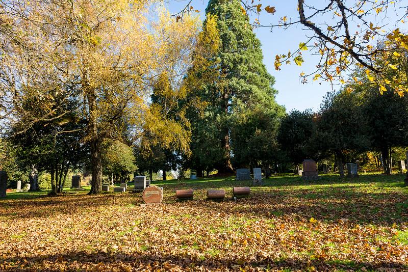 Memorial Cemetery Redux