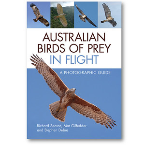 OK so my image is the tiny Kestrel 3rd from left.   Nice book though!