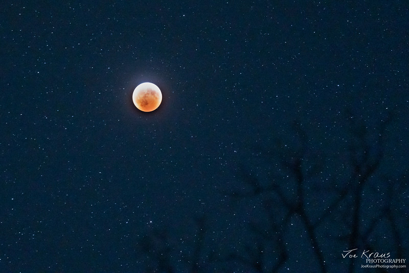 Super Blood Wolf Moon III