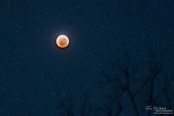 Super Blood Wolf Moon III