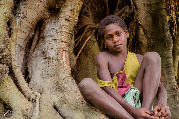 Vanuatu, Tanna, Athenes, Boy in Banyan Tree