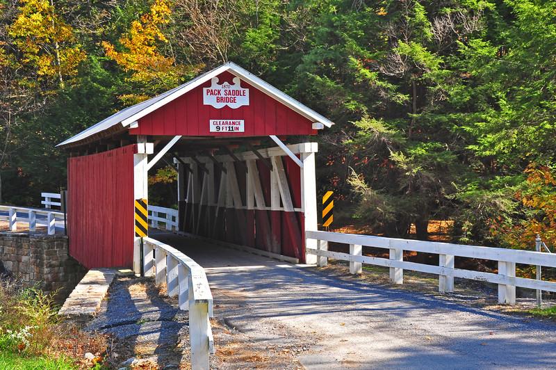 Pack Saddle Bridge - Somerset County, PA - 2010