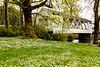 OR Larwood Bridge 1