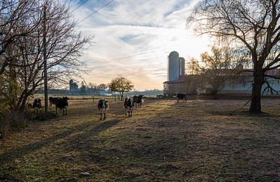 Lancaster County Farm Near Blitzer's Mill Covered Bridge