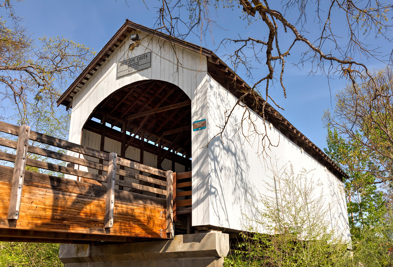 OR Antelope Creek Bridge 2