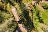 OR Drift Creek 2