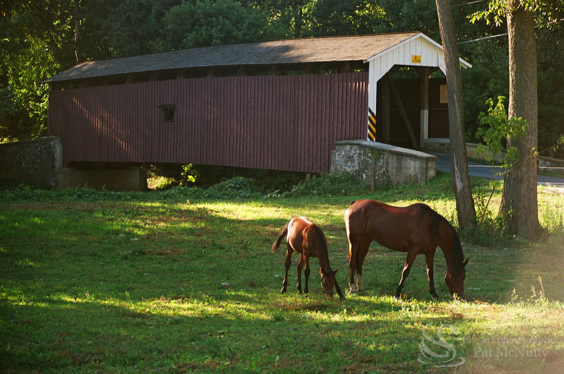 Lancaster County Covered Bridges Picture