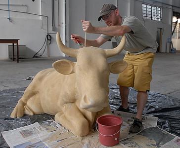 Flavien Arker - Vaca de Praia -  Foto Alexandre Vidal (33)
