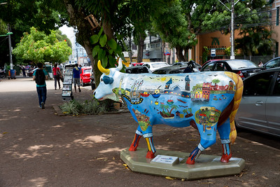 6 Cow Curro_Carlos Sampaio e equipe (2)