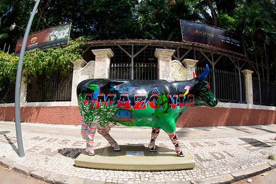 25 Vaca Amazônia_Kambô (2)