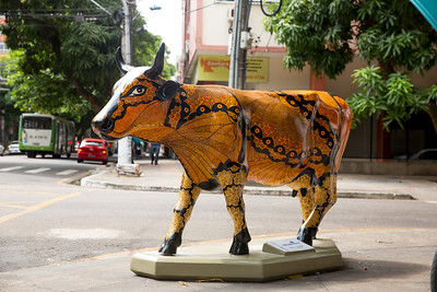 10 Vaca Faceira_Elieni Tenório (1)