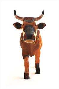 Nasty Cow - BUCH25032 - 02