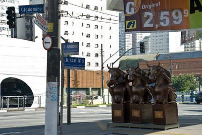 cow2010 na rua I038