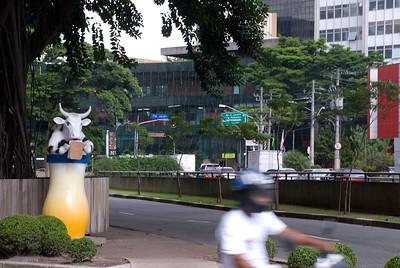 cow2010 na rua I051