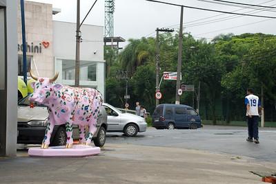 cow2010 na rua I025