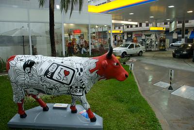 cow2010 na rua I036