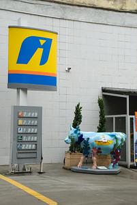 cow2010 na rua I012