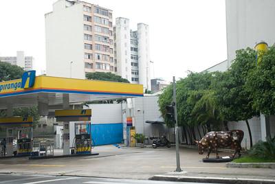 cow2010 na rua I002