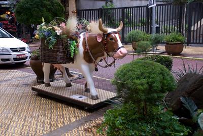 cow2010 na rua I030