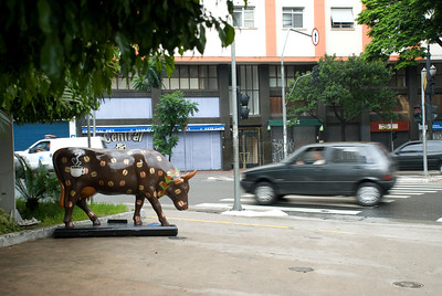 cow2010 na rua I004