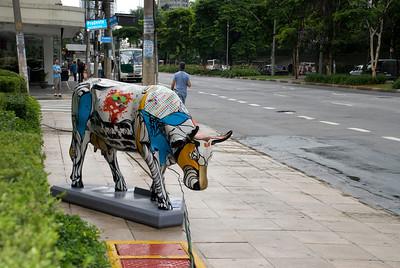 cow2010 na rua I079